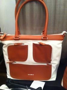 Samsonite Travel Bag